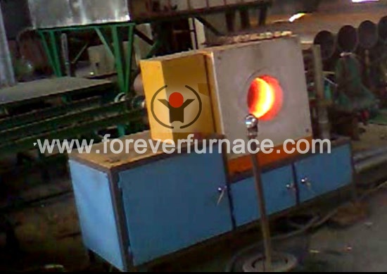 pipe end induction heater